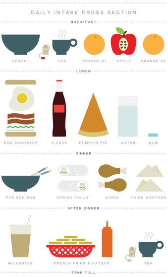 food-illustration-daily-intake-cross-section