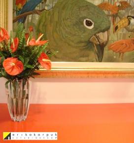 Reforma e decoração no Ap na vl. Leopoldina em SP. Projeto Erika Karpuk